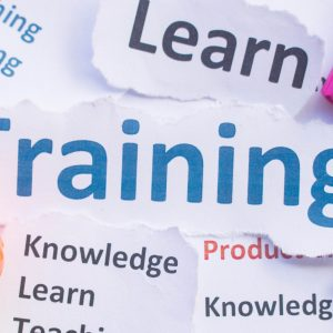 Small Business Training for Entrepreneurs